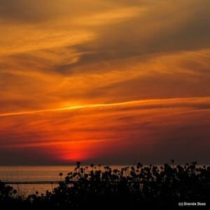 sunset over the gulf of mexico in Southwest Florida