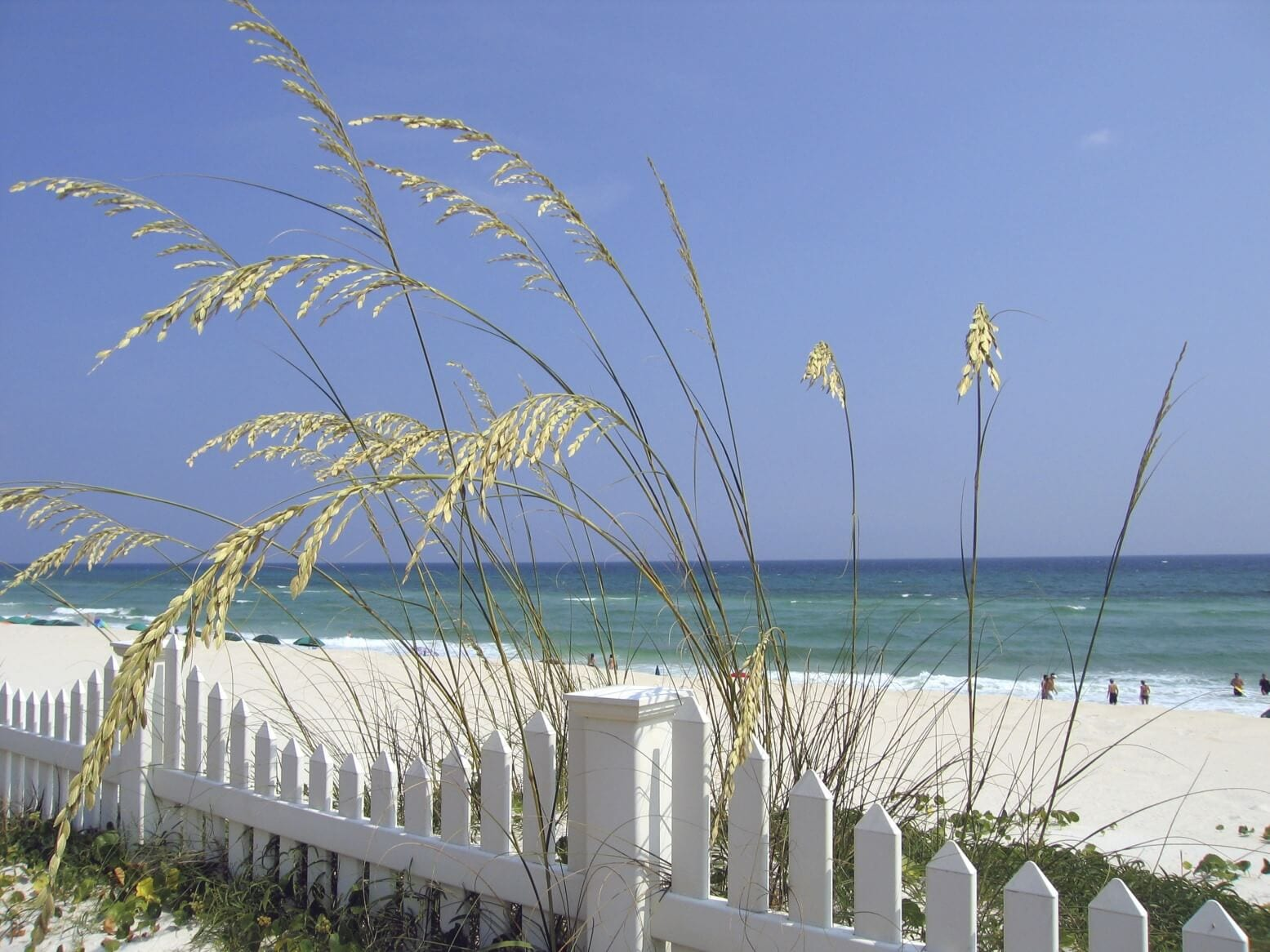 Sanibel and Fort Myers Beaches are Nearby