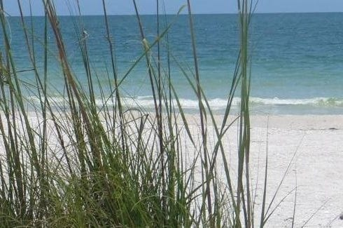 Florida Beach Access Guide
