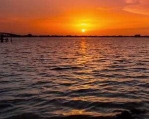 south Cape Coral Video Cover